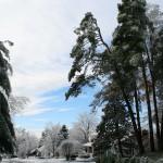 Winter104