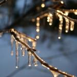 Winter112