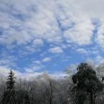 Winter122