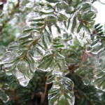 Winter127