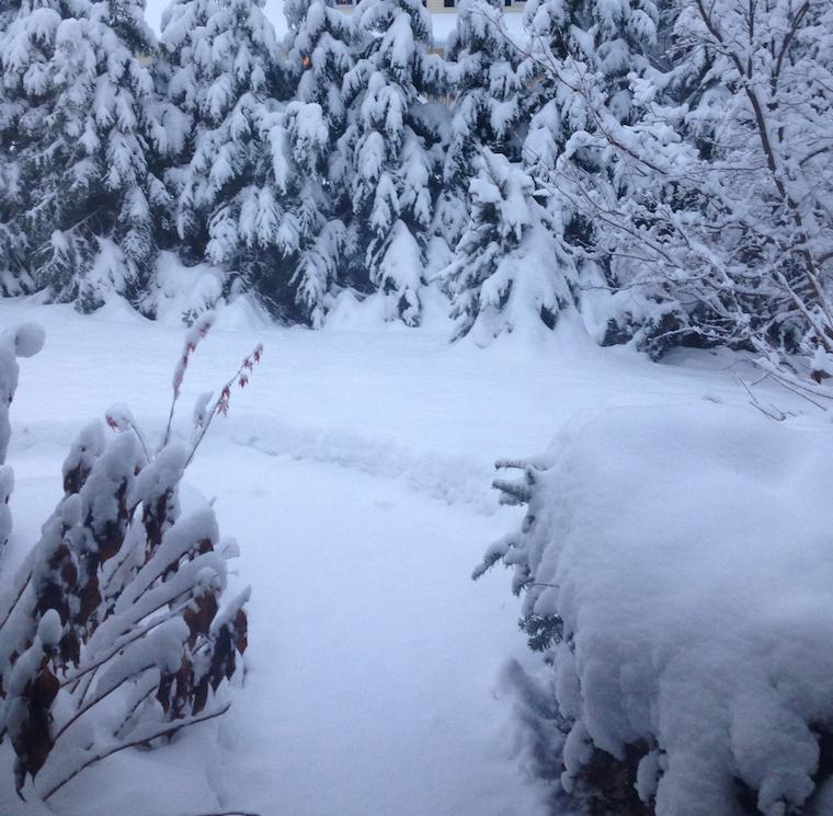 wint snow 001