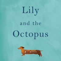 lily octopus