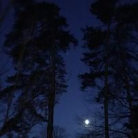 17mystic moon0